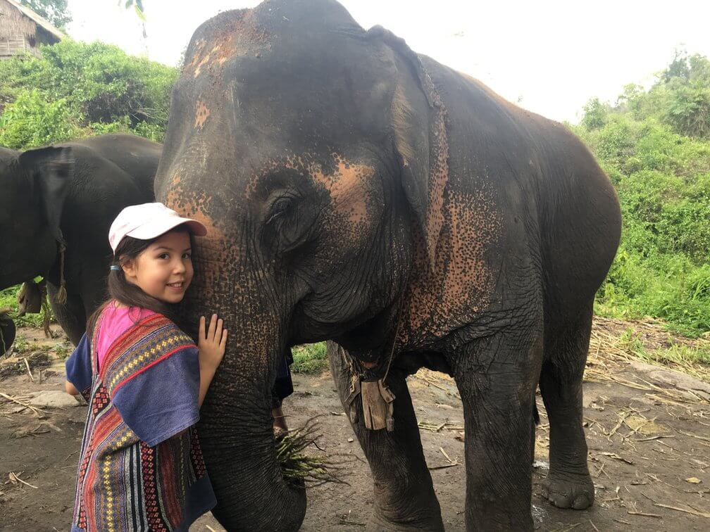 At the elephant sanctuary in Chiang Mai